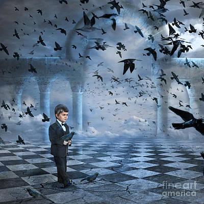 Tristan's Birds Poster