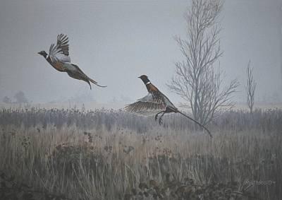 Valley Pheasants Poster