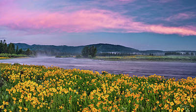 Warm River Spring Sunrise Poster