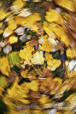 Whirlpool Of Autumn Poster