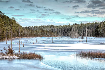 Poster featuring the photograph Winter At Lake Oswego by Kristia Adams