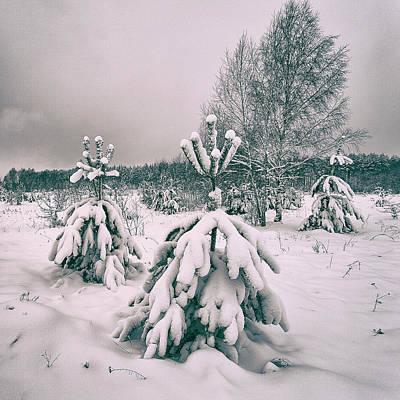 Winter's Coming. Horytsya, 2018. Poster