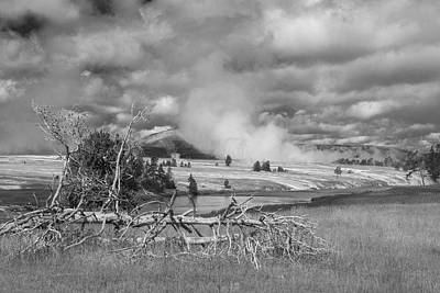 Poster featuring the photograph Yellowstone Steam by Matthew Irvin