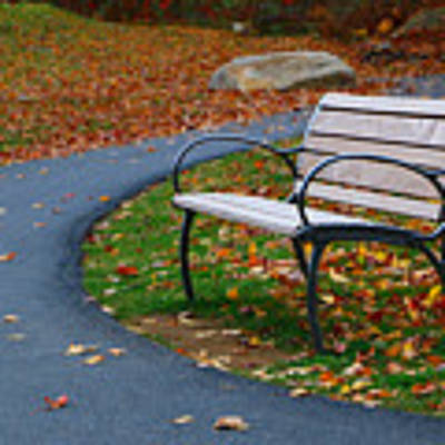 Bench On The Walk Poster by Rick Morgan