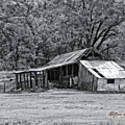 Auburn Barn Poster by William Havle