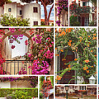 autumn houses,  gardens and balconies in Portugal Poster by Ariadna De Raadt