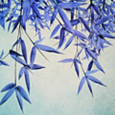 Bamboo Susurration Poster by Priska Wettstein