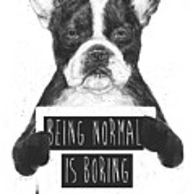 Being Normal Is Boring Poster by Balazs Solti