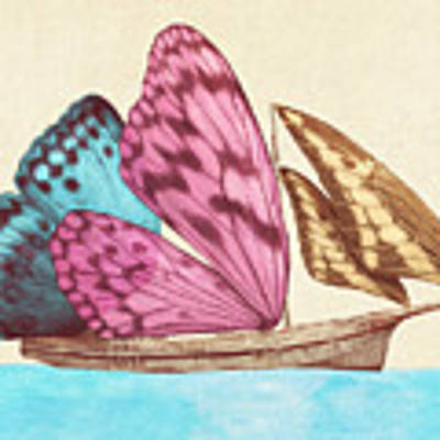 Butterfly Ship Poster by Eric Fan