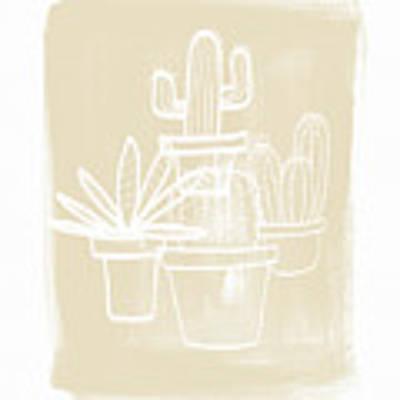 Cactus In Pots- Art By Linda Woods Poster by Linda Woods