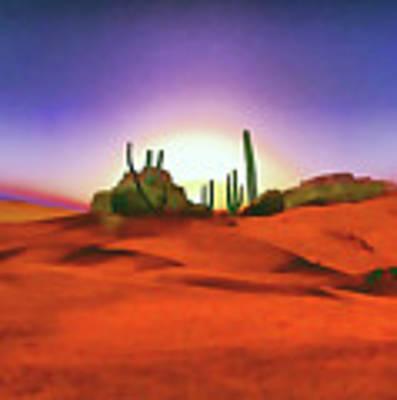 Desert Sands Poster by Valerie Anne Kelly
