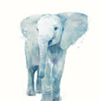 Elephant Poster by Amy Hamilton
