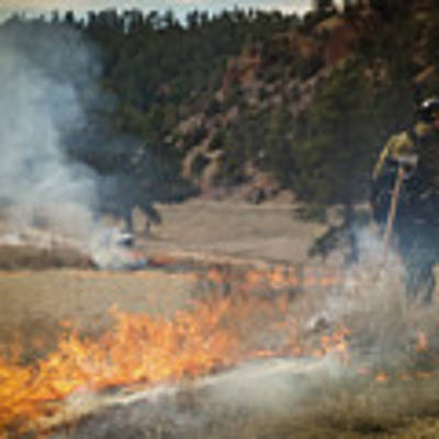 Firefighter Ignites The Pleasant Valley Prescribed Fire Poster by Bill Gabbert