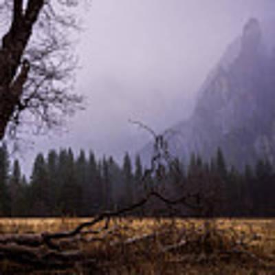 First Snow In Yosemite Valley Poster by Priya Ghose