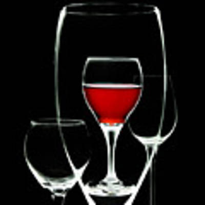 Glass Of Wine In Glass Poster