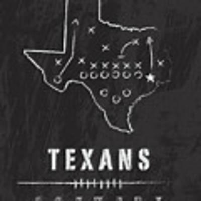 Houston Texans Art - Nfl Football Wall Print Poster