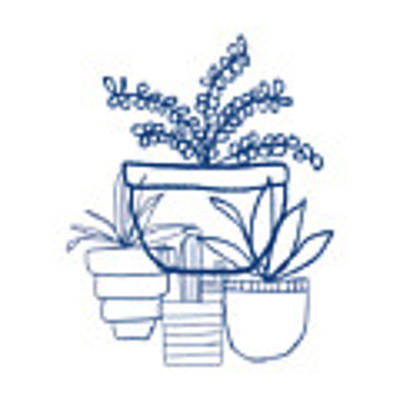 Indigo Potted Succulents- Art By Linda Woods Poster by Linda Woods