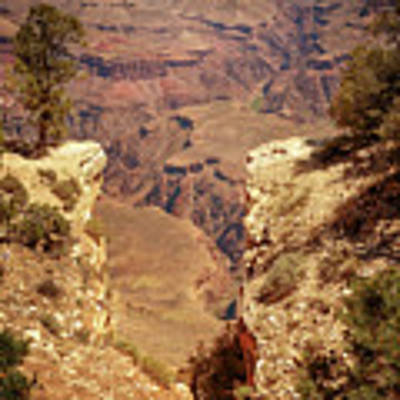 Into The Canyon Poster by Susan Rissi Tregoning