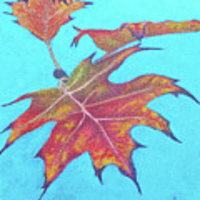 Drifting Into Fall Poster by Phyllis Howard