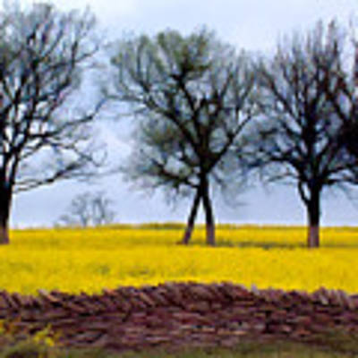Mustard Poster by Sam Davis Johnson