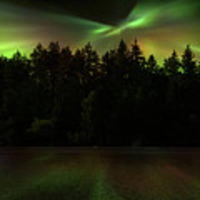 Northern Lights Woodland  Poster by Gigi Ebert