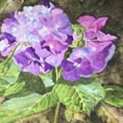 Purple Majesty  Poster by Jean Blackmer