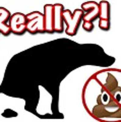 Really No Poop Poster by Kathy Tarochione