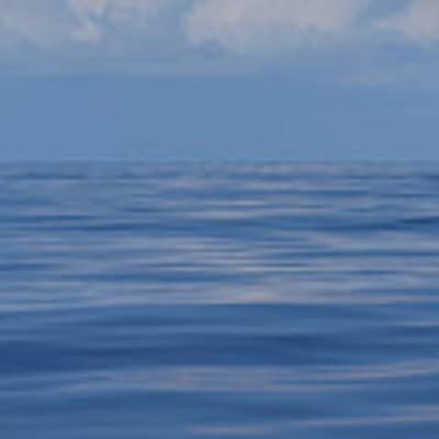 Serene Pacific Poster by Jennifer Ancker
