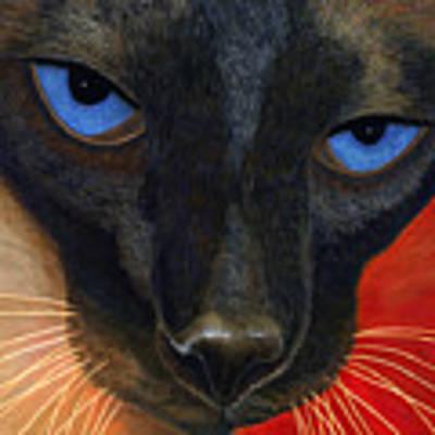 Siamese Poster by Karen Zuk Rosenblatt