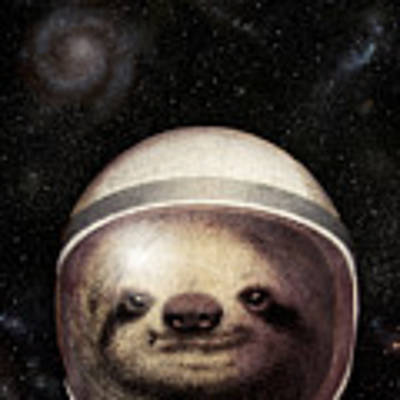 Space Sloth Poster by Eric Fan