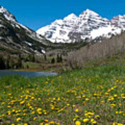 Spring At The Maroon Bells Poster by Cascade Colors