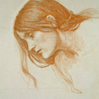 Study Of A Girls Head Poster