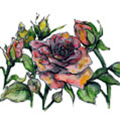 Stylized Roses Poster by Lauren Heller