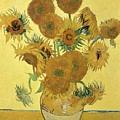Sunflowers, 1888  Poster by Vincent Van Gogh