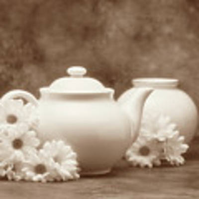 Teapot With Daisies I Poster