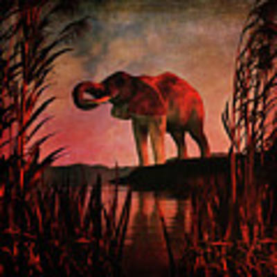 The Drinking Elephant Poster by Jan Keteleer