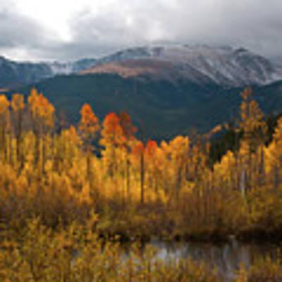 Vivid Autumn Aspen And Mountain Landscape Poster by Cascade Colors
