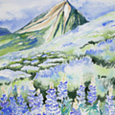 Watercolor - Crested Butte Lupine Landscape Poster by Cascade Colors