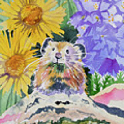 Watercolor - Pika With Wildflowers Poster by Cascade Colors