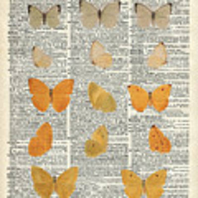 Yellow Butterflies Over Dictionary Book Page Poster