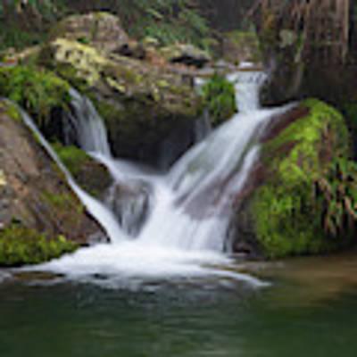 Mountain Waterfall IIi Poster by William Dickman