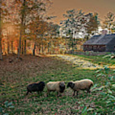 Autumn Sunset At The Old Farm Poster by Wayne Marshall Chase