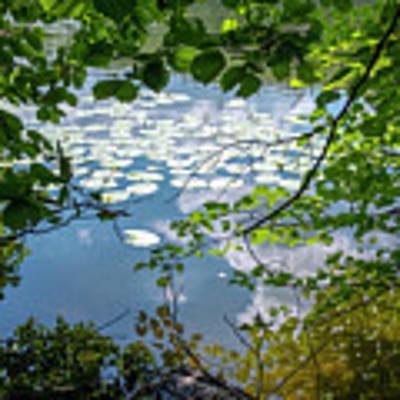 beauty at a lake near Swieta Lipka, Masurian Lake District Poster by Dubi Roman