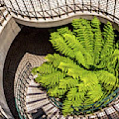Embarcadero Stairway Poster by Kate Brown