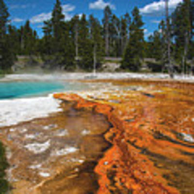 Grand Prismatic Spring Poster by Mae Wertz