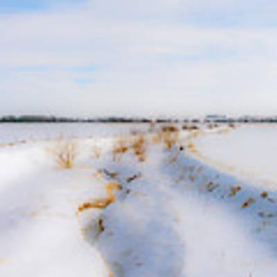 Iowa Winter Wonder Land Poster by Edward Peterson