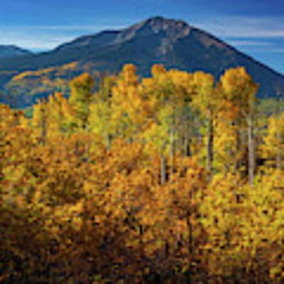 Mountains And Aspen Poster by John De Bord