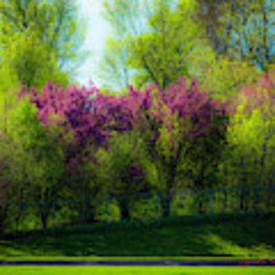 Nebraska Springtime Poster by Edward Peterson