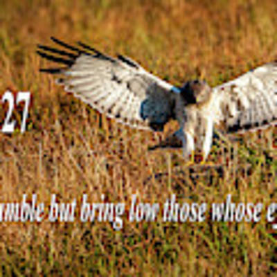 Psalm 18 27 Humble Poster by Jeff Phillippi