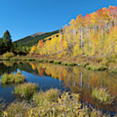 South Elbert Autumn Beauty Poster by Cascade Colors